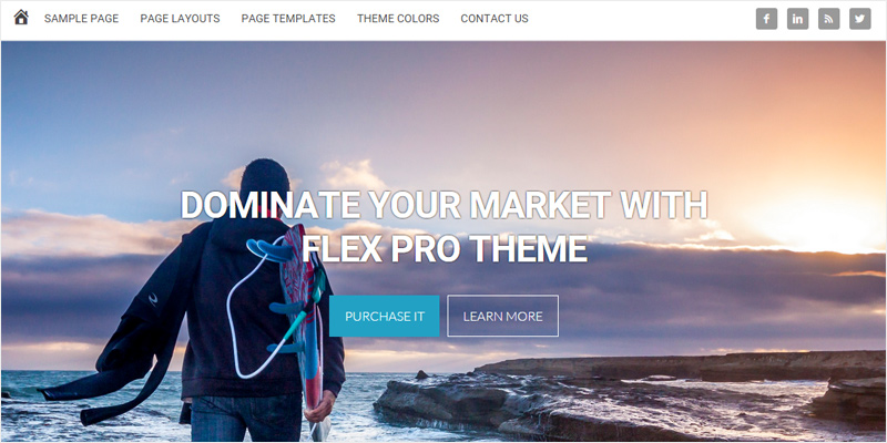 Home page banner widget flex theme