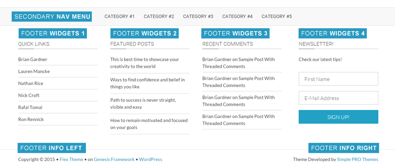 footer sections and widgets in flex theme